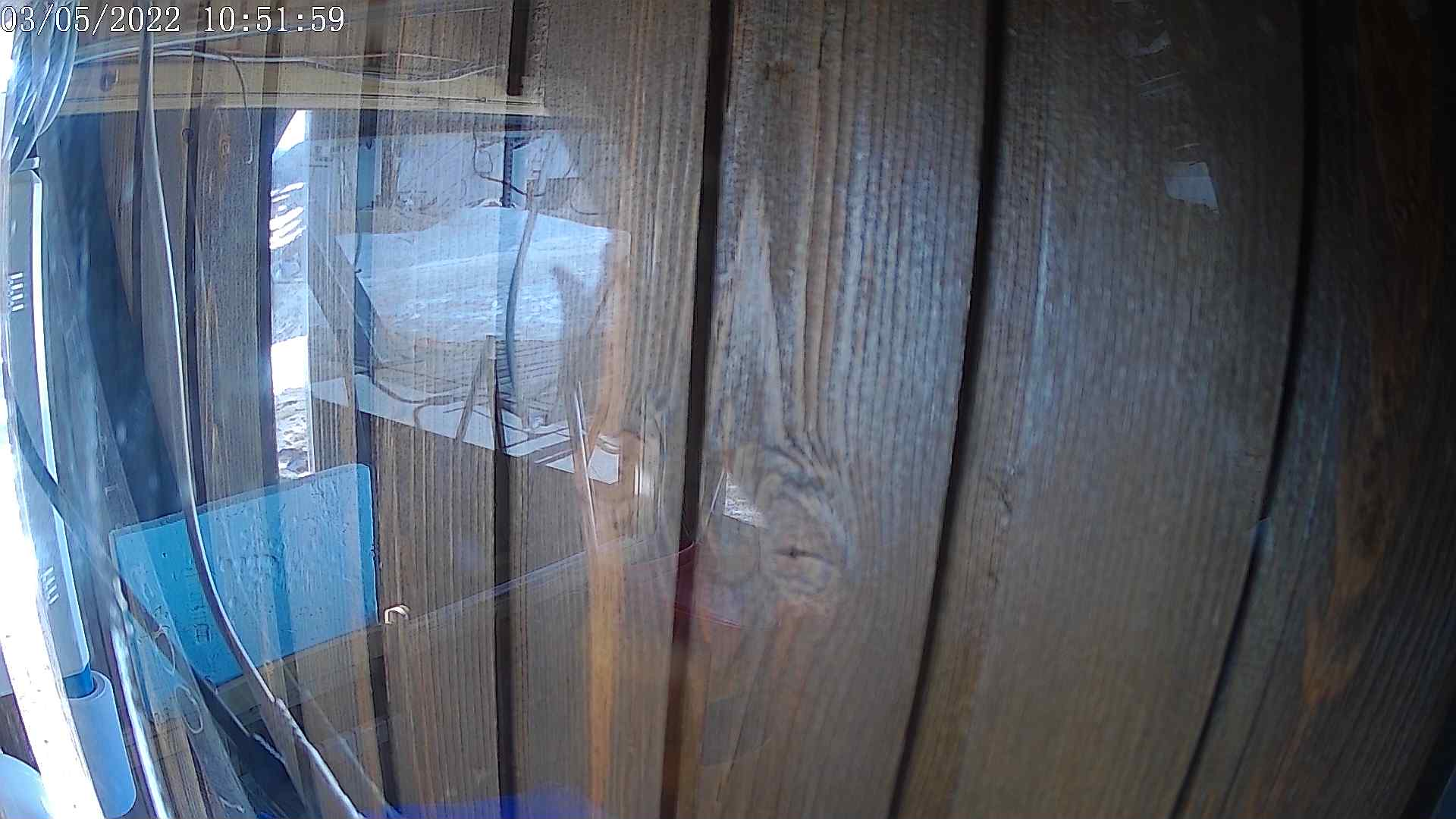 Webcam en Cebolledo 2.000m.