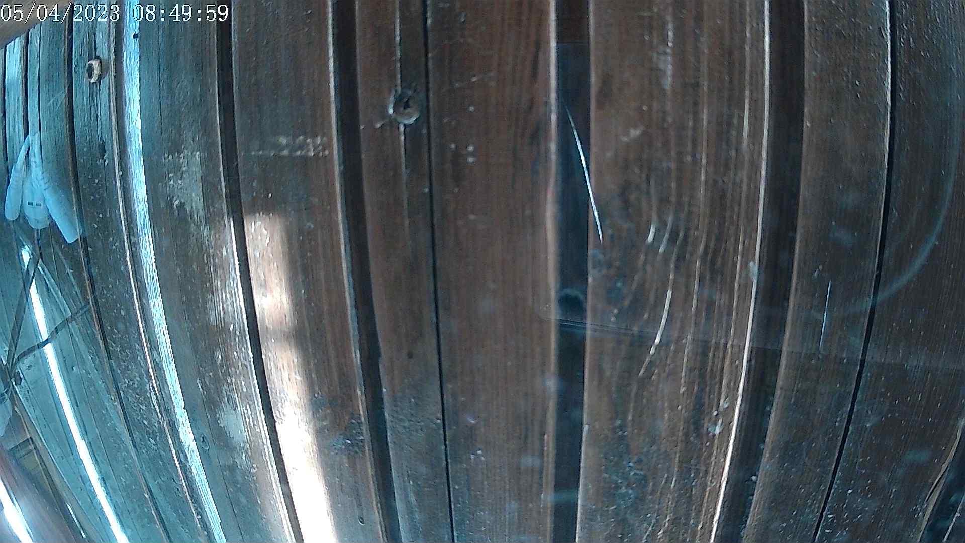 Webcam en Riopinos